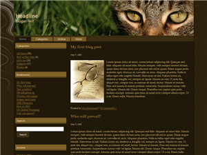 Cat Eyes Free Wordpress Theme